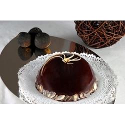 Гель Долфин Шоколад